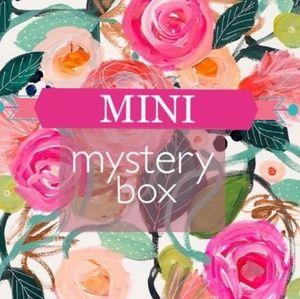 Mini Reseller Mystery Box